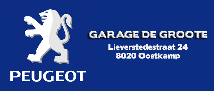 Garage de groote peugeot occasie afbraak for Garage peugeot avenue d italie